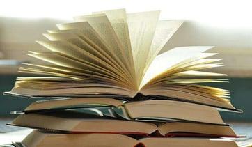 Un Primer Vistazo al Nuevo Libro Digital Minds de WSI