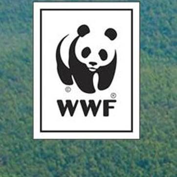 Cómo WSI creó una solución de cliente galardonada en Brasil en tiempo récord